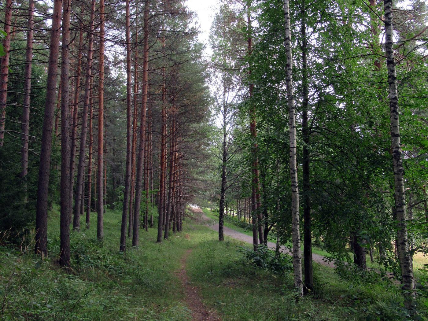 hämelinna_site-visit-3_1400